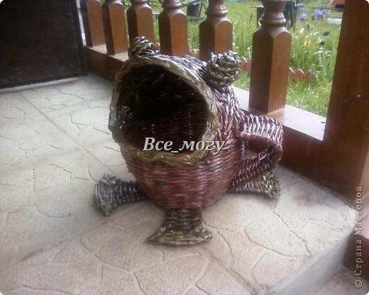 Лягушка-прожорливое брюшко)))) фото 1
