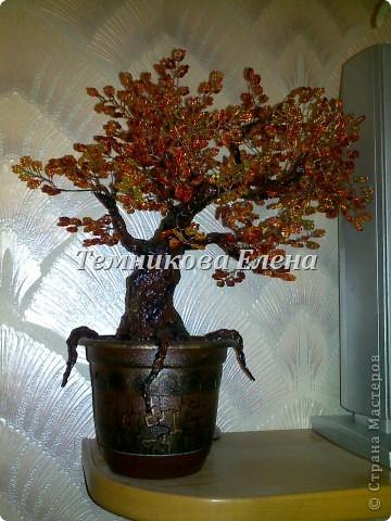 Добрый вечер! Выставляю свои первые и пока единственные бисерные деревья.  фото 4