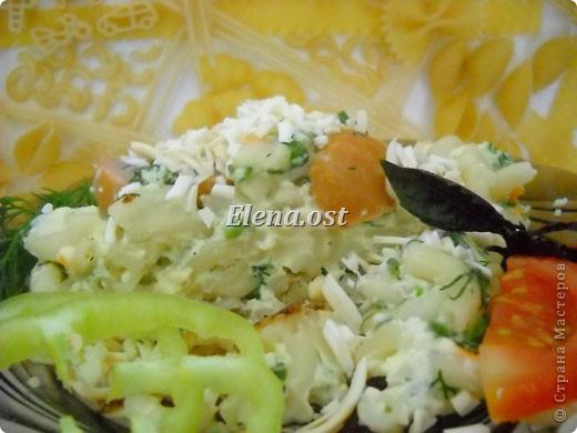 """Готовясь ко Дню рождения макарон http://stranamasterov.ru/node/374242?k=all&u=9321, я закупила различные виды этого прекрасного продукта. 11 сентября непременно готовим блюда из макарон.  Предлагаю приготовить вкусное и оригинальное блюдо: """"Фаршированные макароны"""". Для этого нам понадобятся: """"гигантская ракушка"""" - 200 г, фарш мясной - 200г,  лук - 1шт.  морковь - 1шт.  грибы - 100 г. солЬ, перец - по вкусу,  зелень петрушки, укропа. Для соуса:  сметана - 100 г,  твердый сыр - 100 г. фото 56"""