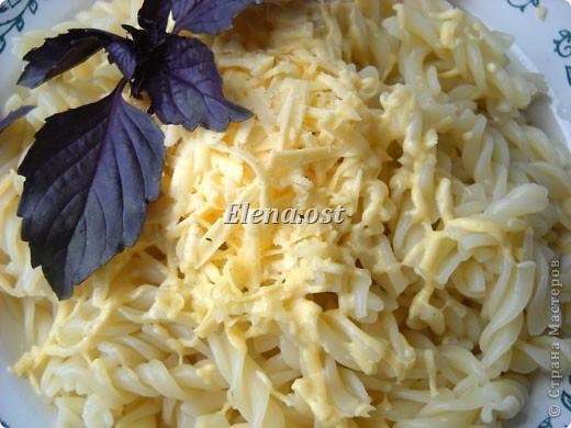 """Готовясь ко Дню рождения макарон http://stranamasterov.ru/node/374242?k=all&u=9321, я закупила различные виды этого прекрасного продукта. 11 сентября непременно готовим блюда из макарон.  Предлагаю приготовить вкусное и оригинальное блюдо: """"Фаршированные макароны"""". Для этого нам понадобятся: """"гигантская ракушка"""" - 200 г, фарш мясной - 200г,  лук - 1шт.  морковь - 1шт.  грибы - 100 г. солЬ, перец - по вкусу,  зелень петрушки, укропа. Для соуса:  сметана - 100 г,  твердый сыр - 100 г. фото 15"""
