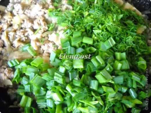 """Готовясь ко Дню рождения макарон http://stranamasterov.ru/node/374242?k=all&u=9321, я закупила различные виды этого прекрасного продукта. 11 сентября непременно готовим блюда из макарон.  Предлагаю приготовить вкусное и оригинальное блюдо: """"Фаршированные макароны"""". Для этого нам понадобятся: """"гигантская ракушка"""" - 200 г, фарш мясной - 200г,  лук - 1шт.  морковь - 1шт.  грибы - 100 г. солЬ, перец - по вкусу,  зелень петрушки, укропа. Для соуса:  сметана - 100 г,  твердый сыр - 100 г. фото 36"""