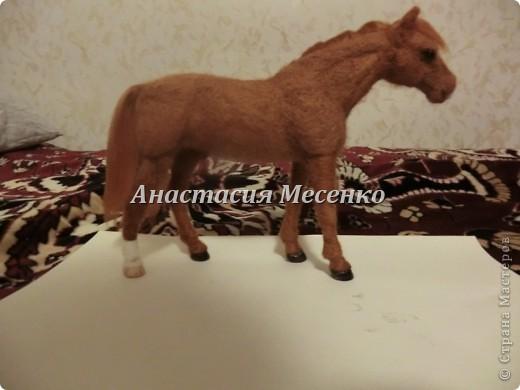 Валяная лошадь.Викинг(1-я работа на заказ) фото 1