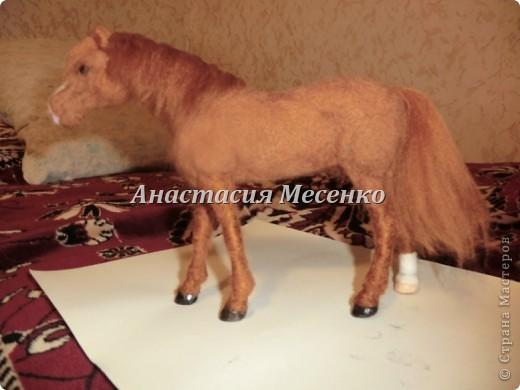 Валяная лошадь.Викинг(1-я работа на заказ) фото 2