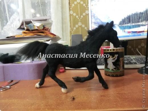 Валяный конь-Визави(2-я работа на заказ) фото 1