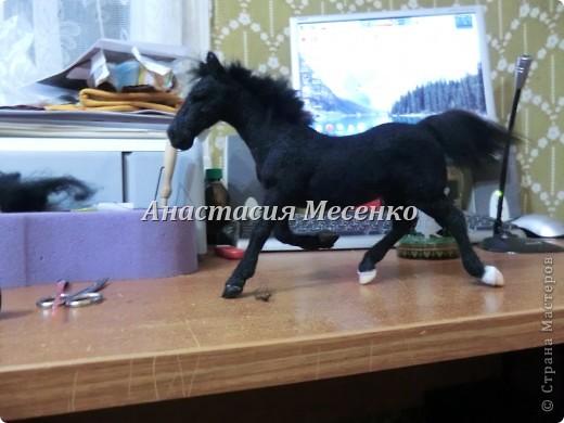 Валяный конь-Визави(2-я работа на заказ) фото 2