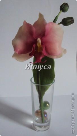 Розы получились не естественно розового цвета. фото 7