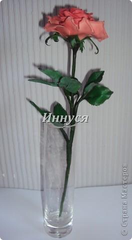 Розы получились не естественно розового цвета. фото 5