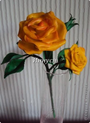 Розы получились не естественно розового цвета. фото 3