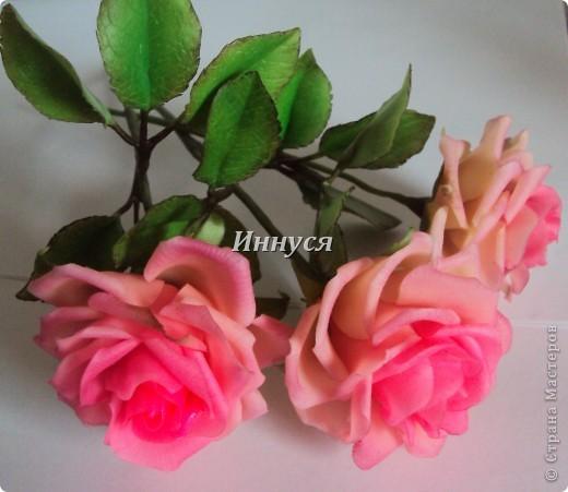 Розы получились не естественно розового цвета. фото 1