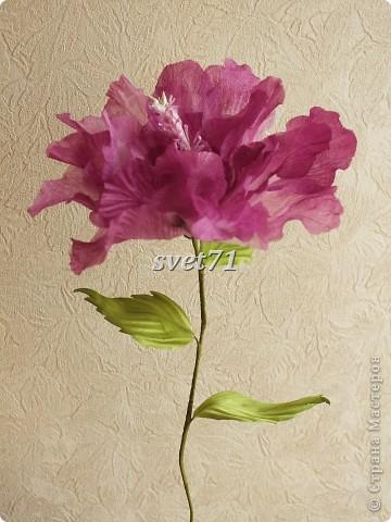 Мои цветочки( работы за последнее время) фото 8