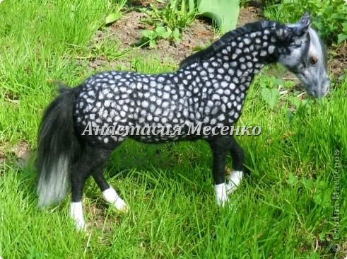 Авторская художественная работа в технике сухого валяния, лошадь(4-я работа на заказ) фото 1