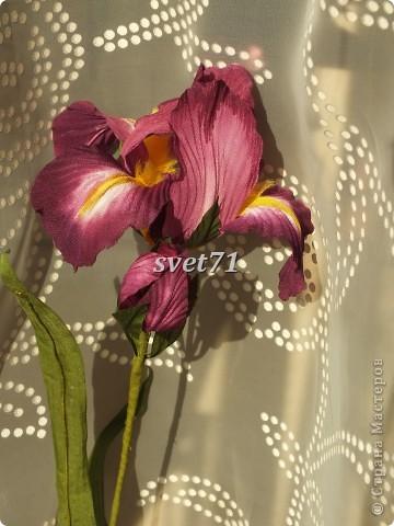 Мои цветочки( работы за последнее время) фото 9
