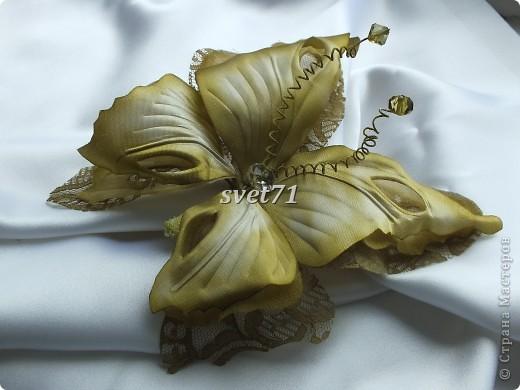 Бабочка из шелка. фото 3