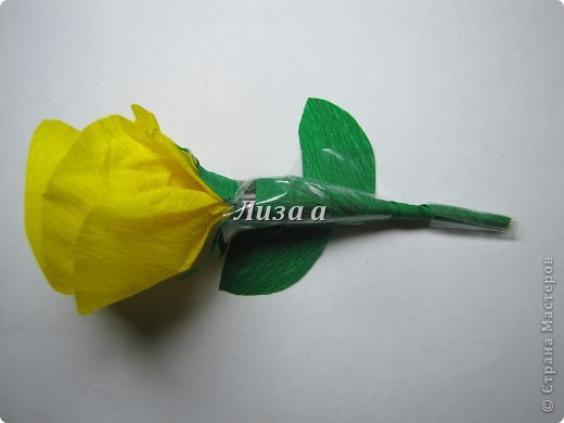 Первый цветок. Качество фото плохое:( фото 3