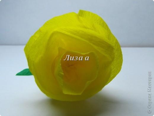 Первый цветок. Качество фото плохое:( фото 4