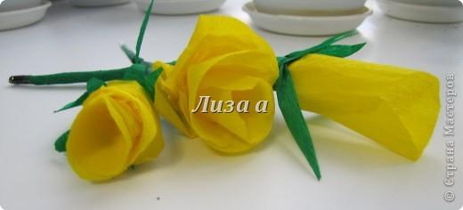 Первый цветок. Качество фото плохое:( фото 7