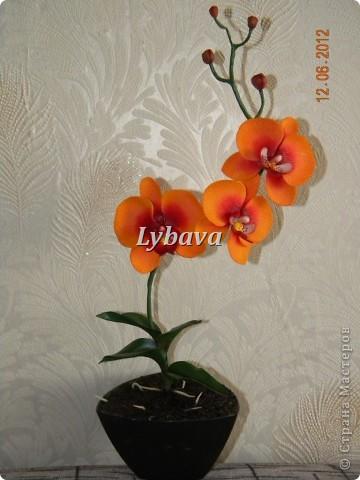 Ну вот, мои хорошие, я наконец то решила выставить свои новые работы и не очень новые. Эту орхидею сделала в подарок учительнице. На память, так сказать. Все таки ж уезжаем.......  фото 1
