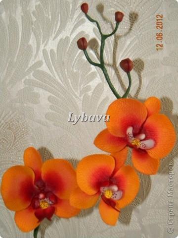 Ну вот, мои хорошие, я наконец то решила выставить свои новые работы и не очень новые. Эту орхидею сделала в подарок учительнице. На память, так сказать. Все таки ж уезжаем.......  фото 3