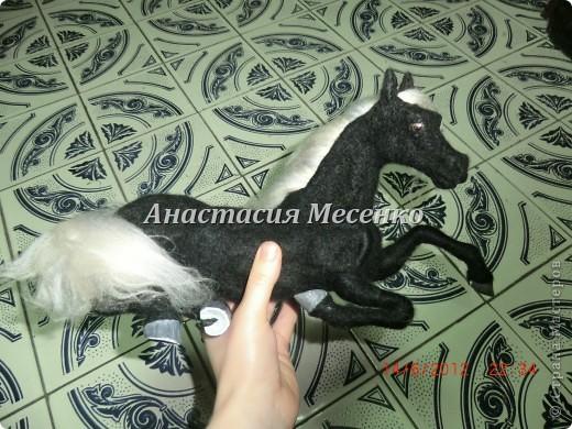 Лошадь (5я работа на заказ) фото 1