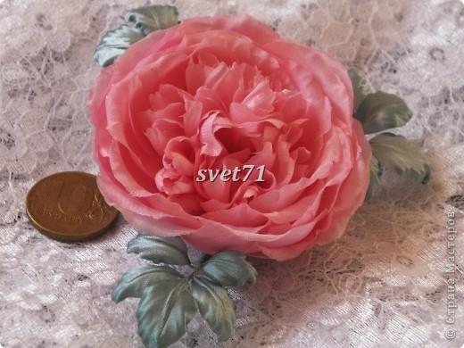 Староанглийская роза(шелк) фото 4