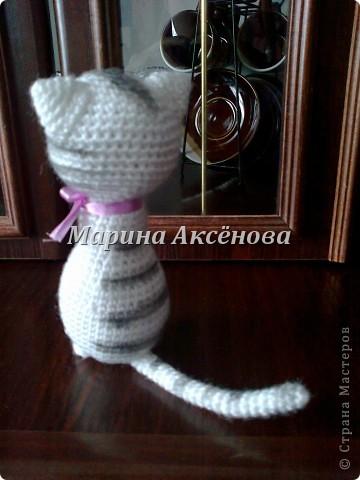 Кошечка фото 2