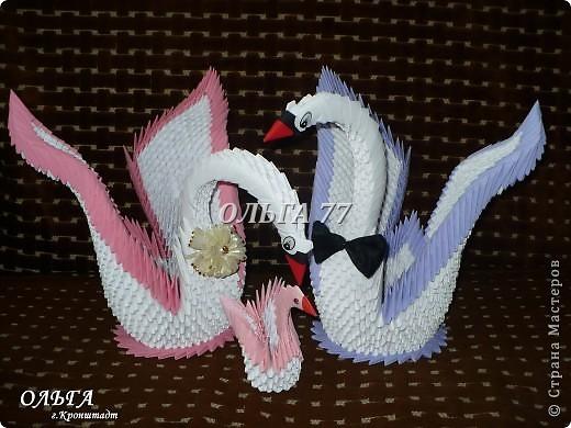 Свадебные лебеди фото 6