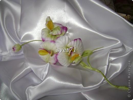 Мои цветочки( работы за последнее время) фото 12