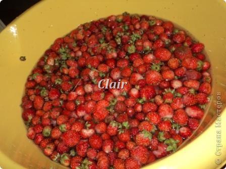 Собираем ягоду в с осени приготовленные корзиночки фото 4