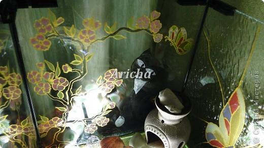 Сделала из старого аквариума вот такой светильник. Первый раз пробовала делать витраж. Как получилось, судить Вам. фото 3