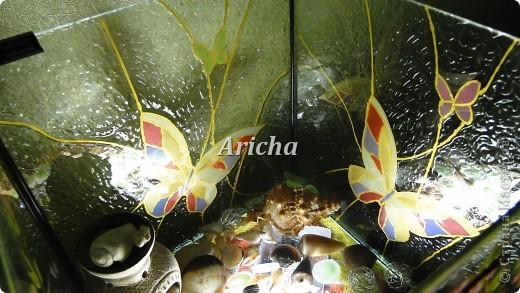 Сделала из старого аквариума вот такой светильник. Первый раз пробовала делать витраж. Как получилось, судить Вам. фото 4
