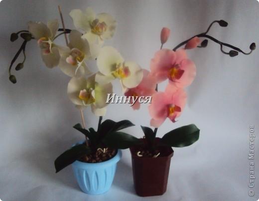 Вот такие орхидейки слепились у  меня на подарок хорошим людям. фото 1