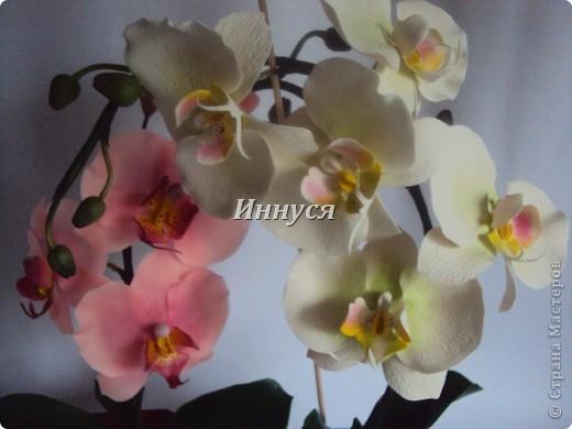 Вот такие орхидейки слепились у  меня на подарок хорошим людям. фото 7