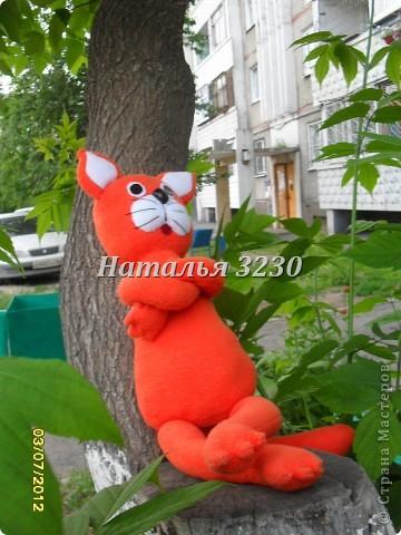Давайте знакомиться! меня зовут кот Мандарин.Назвали меня так из-за моей ярко оранжевой шкурки) фото 4