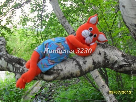 Давайте знакомиться! меня зовут кот Мандарин.Назвали меня так из-за моей ярко оранжевой шкурки) фото 3