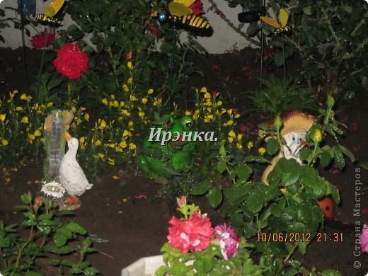 Это наш розарий в мае стояла жарища, что в июне уже роз было - целый миллион! фото 15