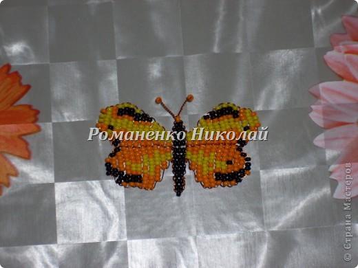 Бабочки из бисера фото 3