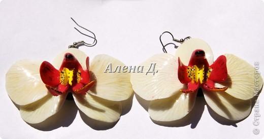 Привет всем! Вот такие типа орхидеи у меня слепились, сильно помидорами не бросайте...все таки кризис.......... фото 2
