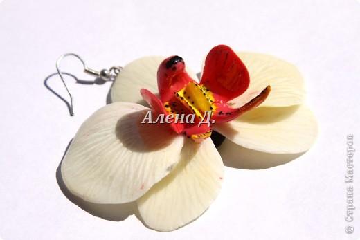 Привет всем! Вот такие типа орхидеи у меня слепились, сильно помидорами не бросайте...все таки кризис.......... фото 4
