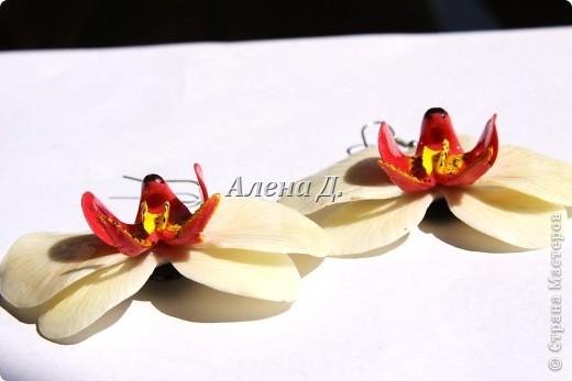 Привет всем! Вот такие типа орхидеи у меня слепились, сильно помидорами не бросайте...все таки кризис.......... фото 5