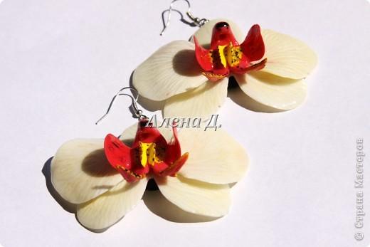 Привет всем! Вот такие типа орхидеи у меня слепились, сильно помидорами не бросайте...все таки кризис.......... фото 6