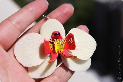 Привет всем! Вот такие типа орхидеи у меня слепились, сильно помидорами не бросайте...все таки кризис.......... фото 7