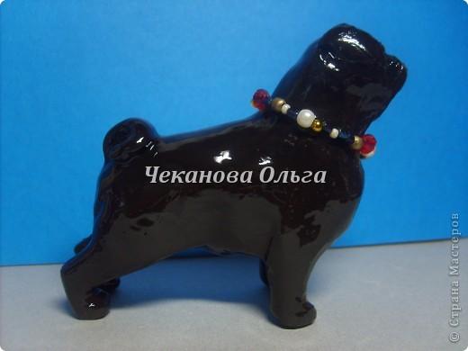 Толстячки мопсики, милые щеночки. фото 3