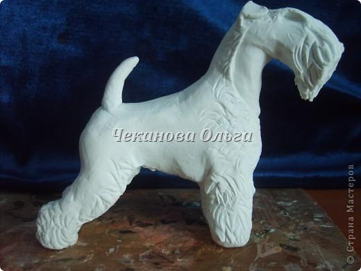 Собака породы керри блю терьер. С орнаментом( по желанию) фото 6