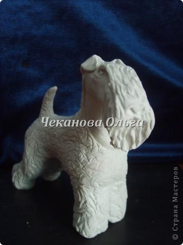 Собака породы керри блю терьер. С орнаментом( по желанию) фото 8