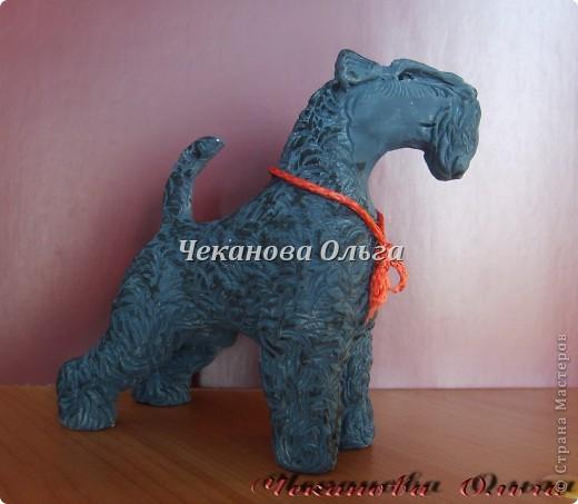 Собака породы керри блю терьер. С орнаментом( по желанию) фото 11