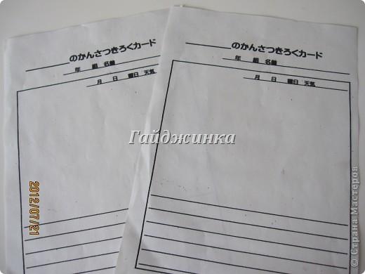 Наконец-то в японских школах начались каникулы! УРА!!!! Японские летние каникулы короткие. Всего-то 1 месяц и 10 дней. Школа начинается со шкафчиков со сменной обувью. Везде надписаны имена, чтоб дети ничего не перепутали. фото 15