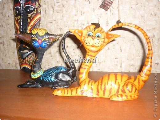 Кот и кошечка фото 1