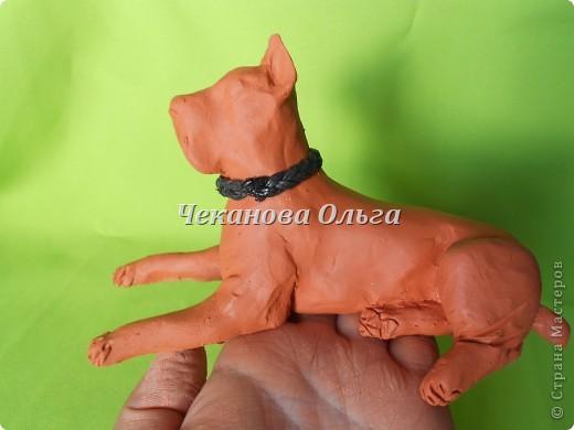 Очередной фоторепортаж  о лепке собаки ( то ка это делаю я) Демонстрация на подопытном кане корсо в лежачем положении. фото 8