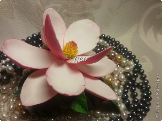 Магнолия, это цветок который вызывает у меня особые чувства. Вот попытка его повторить. Запах магнолии сладость, терпкость, нежность, женственность. Надеюсь Вам понравиться!!! фото 3