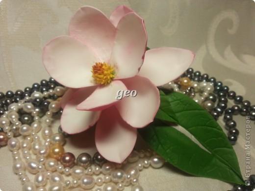 Магнолия, это цветок который вызывает у меня особые чувства. Вот попытка его повторить. Запах магнолии сладость, терпкость, нежность, женственность. Надеюсь Вам понравиться!!! фото 13